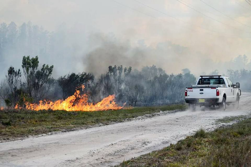fire brush with white truck